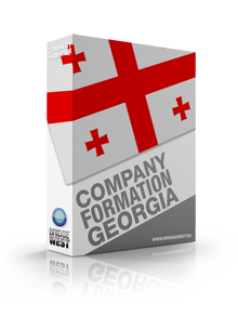 Company Formation Georgia